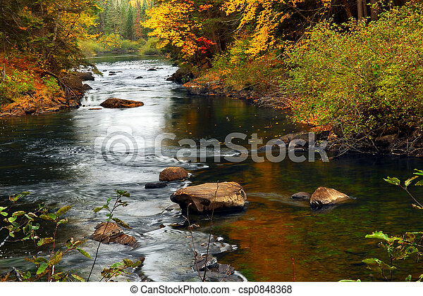 Forest river in the fall - csp0848368