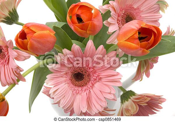 Flowers - csp0851469