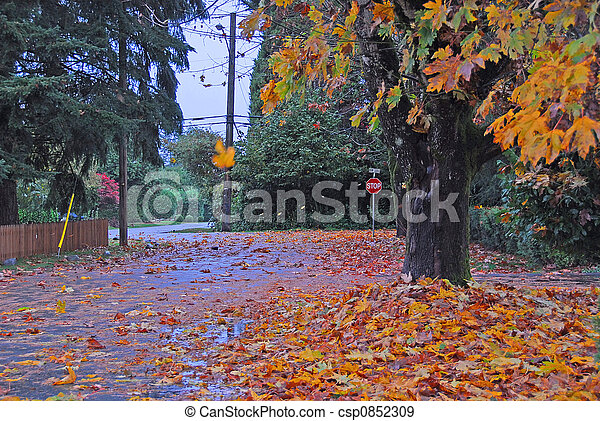 stock photographs of windy fall day windy cloudy rainy Snowy Clip Art Foggy' Clip Art