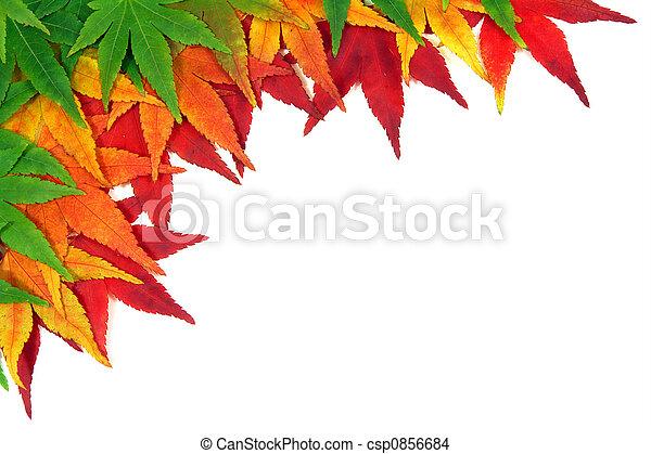 otoño, hojas, encuadrado - csp0856684