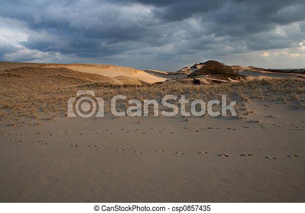 Sand Cape Cod - csp0857435