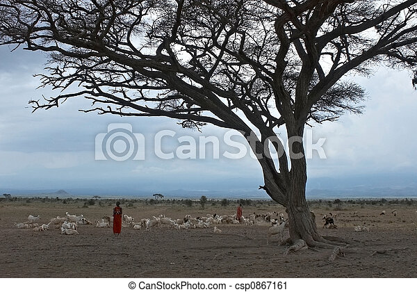 African lanscape with masai. - csp0867161