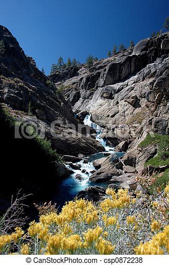 Rabbit Brush and Water Cascade - csp0872238