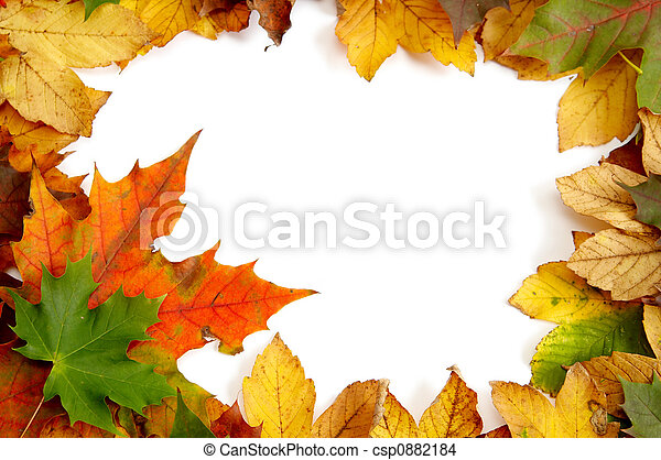 Colorful autumnal leaves - csp0882184