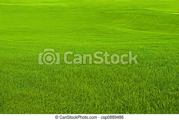 Golf Course - csp0889486