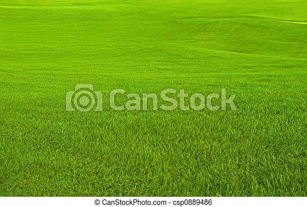 Golf Course - csp0889486