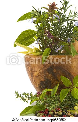 Herbs - csp0889552