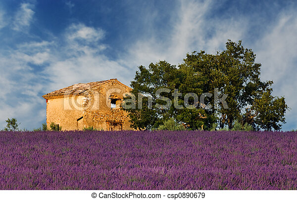 Old barn in Provence - csp0890679