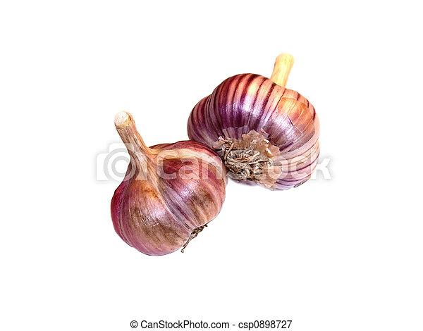 The garlic - csp0898727
