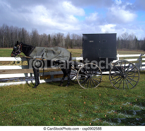 Pictures of amish horse and buggy tied to a wooden fence csp0902588 ...