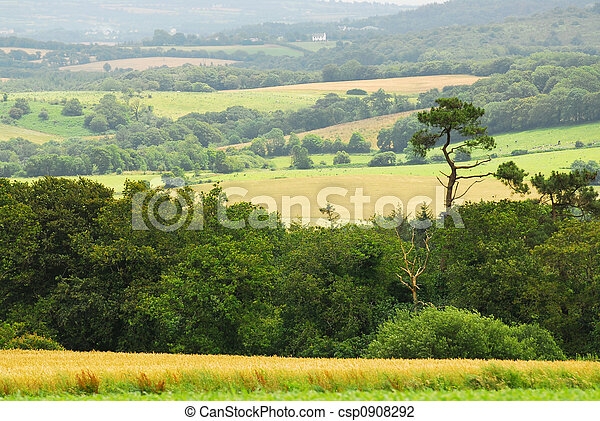 Agricultural landscape - csp0908292