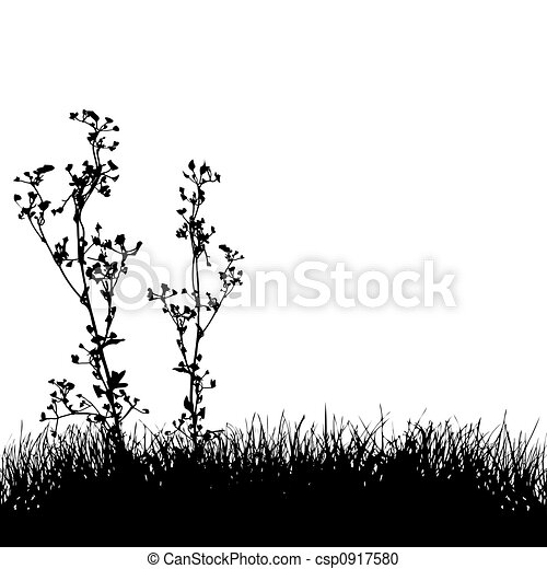 Grass & Plants Silhouette Background - csp0917580