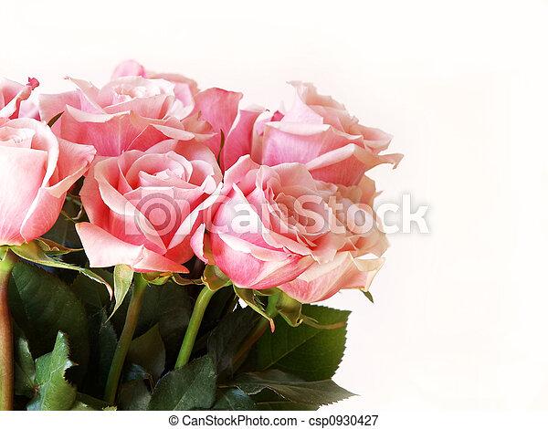 Valentine\\\'s Day pink ros - csp0930427