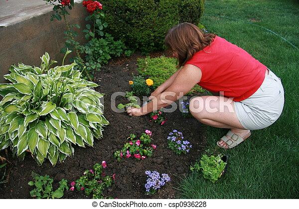 Woman Gardening - csp0936228
