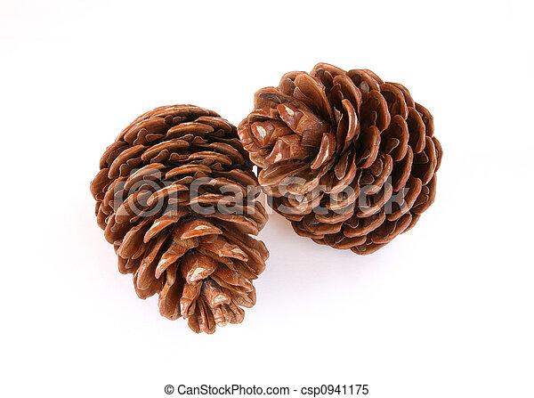 Pine cones - csp0941175