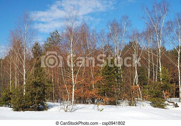 Inverno - csp0941802