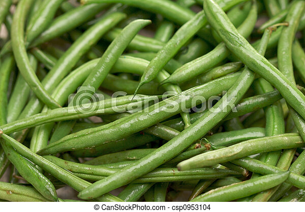 Fresh Green Beans - csp0953104