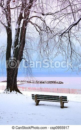 Parc, hiver - csp0955917