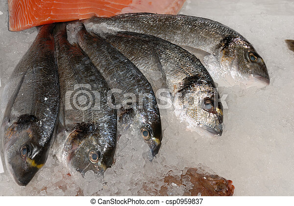 bream at fishmonger - csp0959837