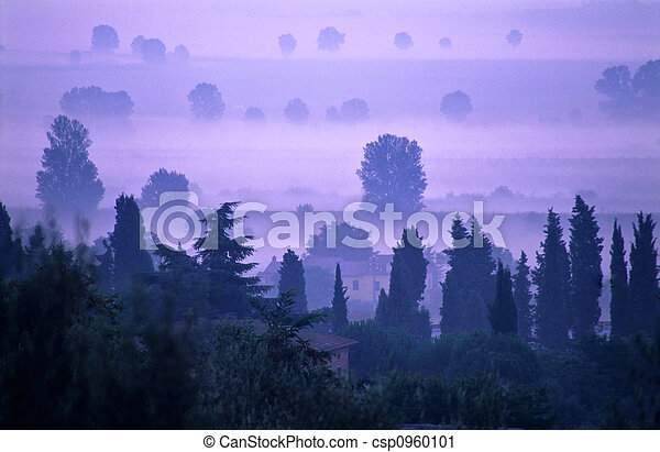 Dawn in Tuscany - csp0960101