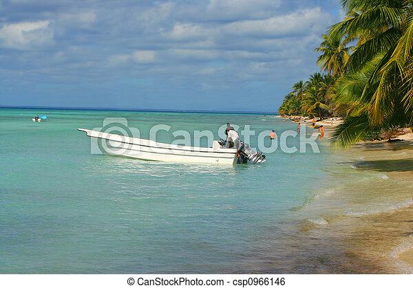 Caribbean shoreline - csp0966146