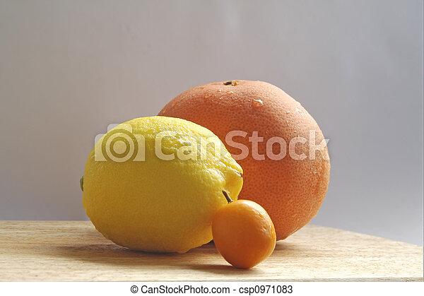 trio of citrusy goodness - csp0971083