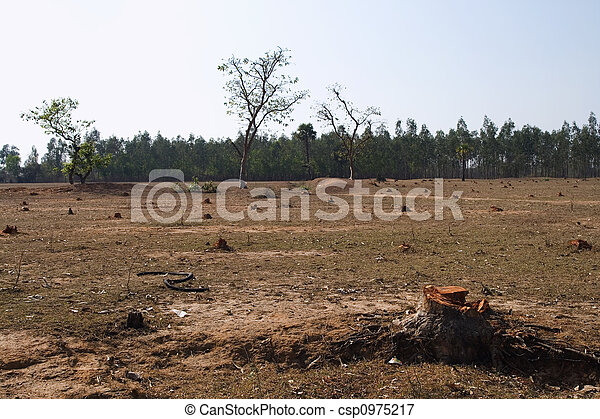 deforestation in india General article deforestation and forest degradation in india – implications for redd+ n h ravindranath, nalin srivastava, indu k murthy, sumedha malaviya, madhushree munsi and nitasha.