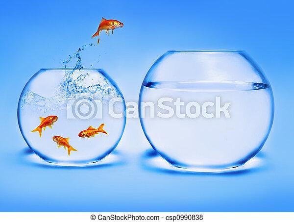 水, 金魚, 跳躍, 在外 - csp0990838