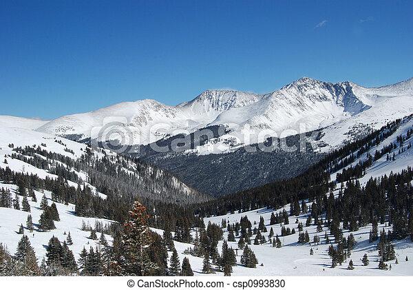 Colorado Mountains - csp0993830