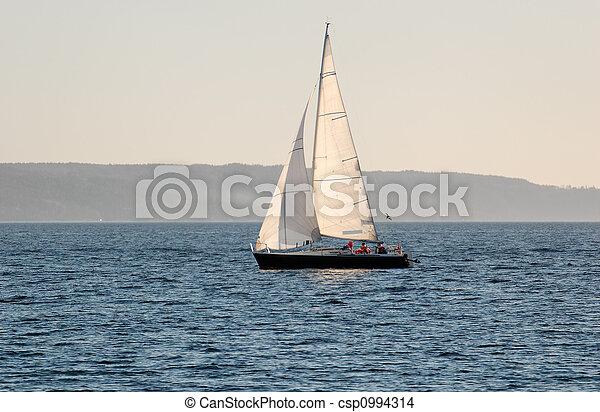 Sail Boat - csp0994314