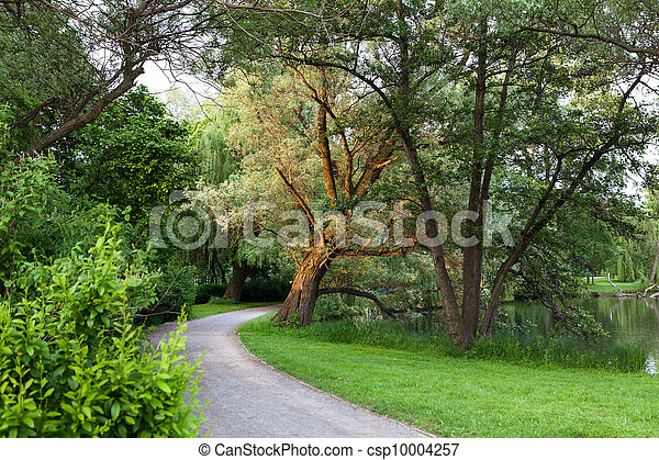 Beautiful road in the park - csp10004257