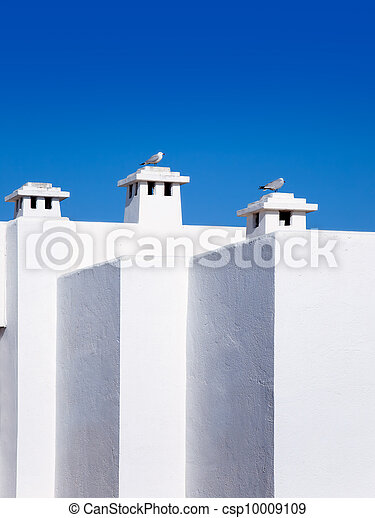 Balearic Mediterranean white houses with seagull - csp10009109