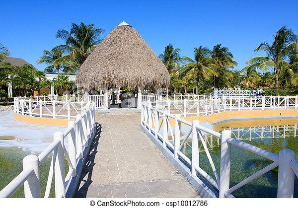 Area of hotel Sol Cayo Largo. - csp10012786