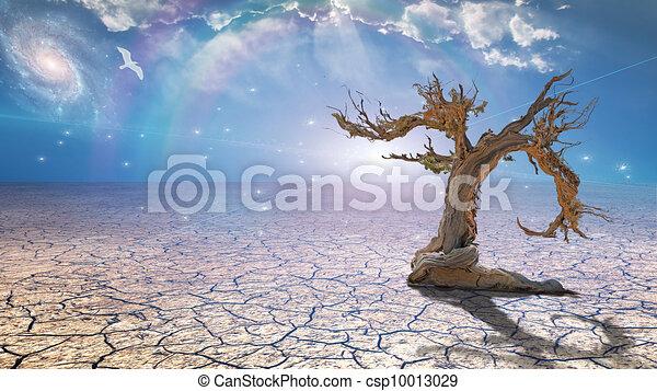 Delightful desert scene with light - csp10013029