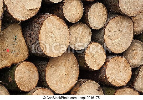 Fire wood - csp10016175