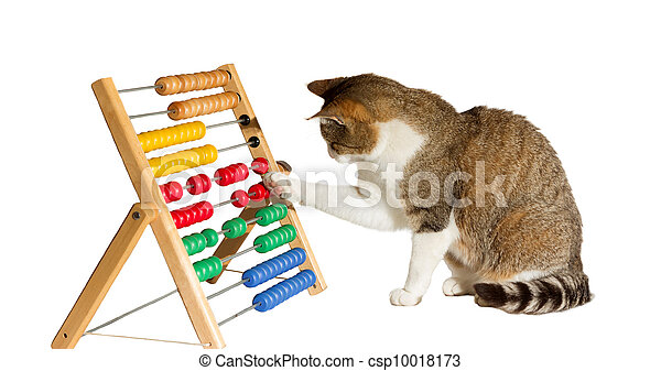 Clever cat mathematician - csp10018173