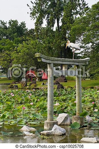 Japanese garden landscape in Singapore  - csp10025708
