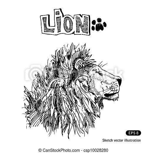 Lion - csp10028280