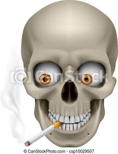 Human Skull - csp10029507