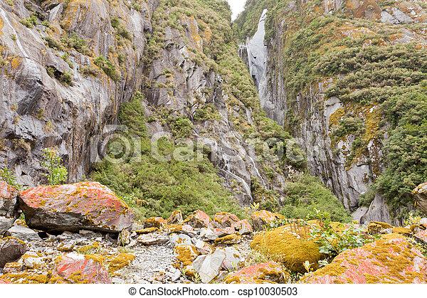 Rugged mountain wilderness vegetation - csp10030503