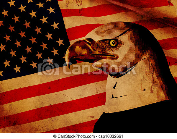 American flag with eagle - csp10032661