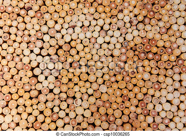 Pile of wood logs - csp10036265