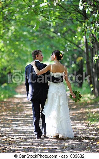 Bride and groom walking into distance - csp1003632