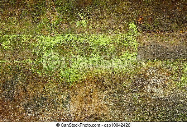Brick wall with moss for background - csp10042426