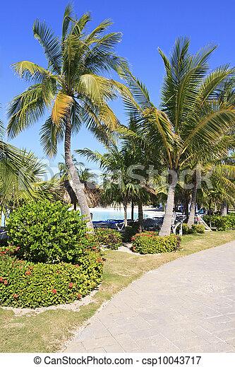 Area of hotel Sol Cayo Largo. - csp10043717