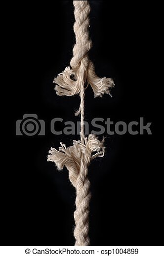 Hanging by a thread - csp1004899