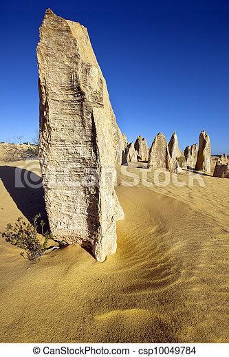 The Pinnacles Western Australia - csp10049784