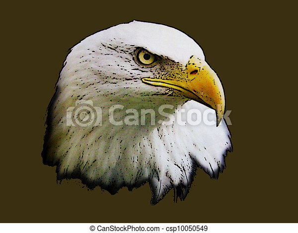 Graphical sketch of silhouette of head predator eagle - csp10050549