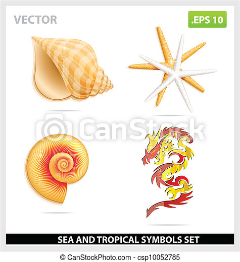 yellow sea shell and dragon symbols set - csp10052785