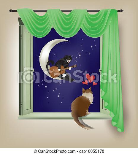 Feline serenade - csp10055178